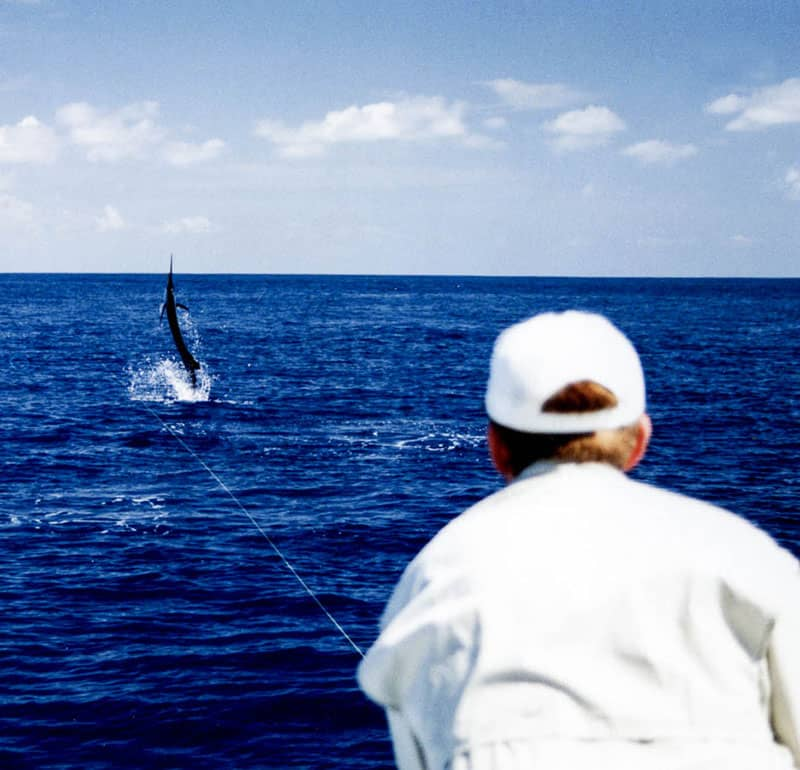 Fishing for Marlin on Fly | Tico Travel