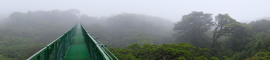 Monteverde Information and Hotels | Tico Travel